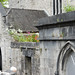 Limerick City - St. Mary's Cathedral (also known as Limerick Cathedral)