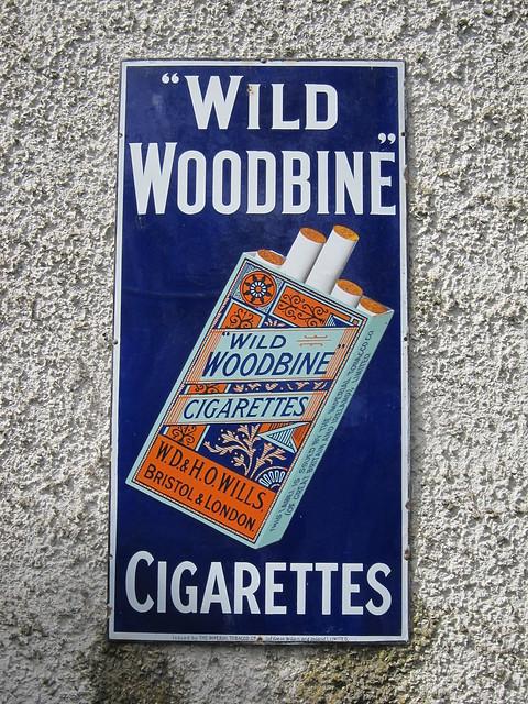 Wild Woodbine cigarettes