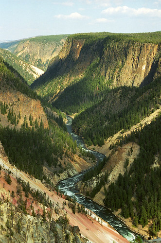Looking Down the Grand Canyon of the Yellowstone