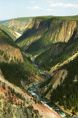 Looking Down the Grand Canyon of the Yellowstone (Robby Edwards) Tags: vacation water river nationalpark canyon yellowstonenationalpark wyoming yellowstoneriver grandcanyonoftheyellowstone specland