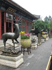 China-0373