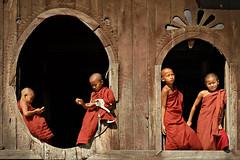 Novices at the windows - Nyaung Shwe - Myanmar (PascalBo) Tags: boy red people window rouge kid nikon asia southeastasia child d70 burma religion monk buddhism monastery myanmar asie enfant fenêtre monastère garçon shanstate bouddhisme novice birmanie moine shweyaunghwe nyaungshwe 123faves asiedusudest pascalboegli lpwindows2