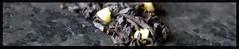 Black almond tea (NinaKouki) Tags: tea marzipan blackalmond