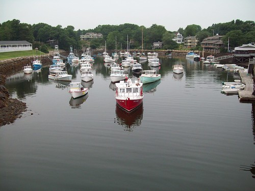 Harbor boats