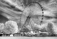 Ferris Wheel in IR (Shawn O'Connell Photography) Tags: digital ir dallas nikon texas d70 infrared fairpark h72 hoya72 platinumphoto top20texas bestoftexas shawnoconnell shawnoconnellphotography skancheli
