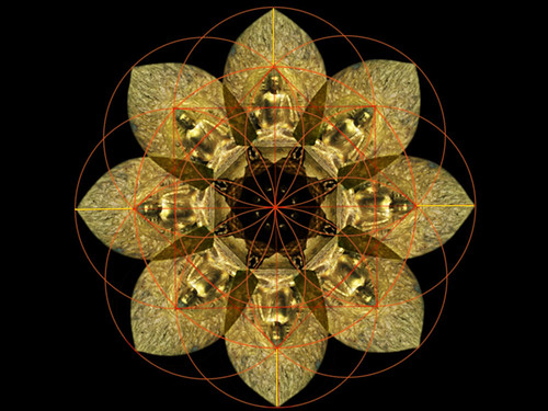 "Mandala • <a style=""font-size:0.8em;"" href=""http://www.flickr.com/photos/30735181@N00/2783568225/"" target=""_blank"">View on Flickr</a>"