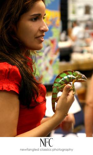 reptile expo 3