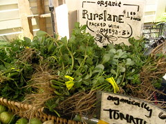 Formerly a Weed (littlewonderpics) Tags: california weed farmers market edible nutritious purslane