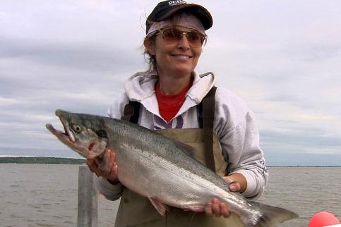 Gov Sarah Palin