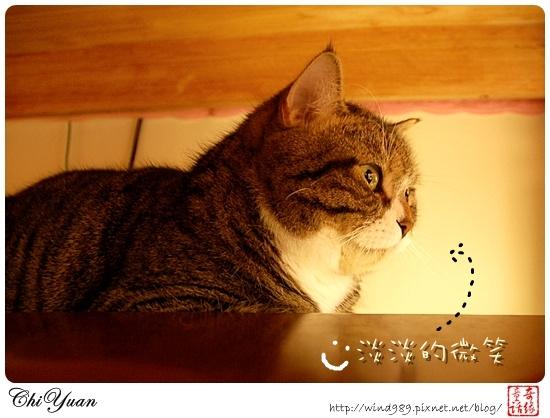 【貓季】淡淡的微笑(DINO)
