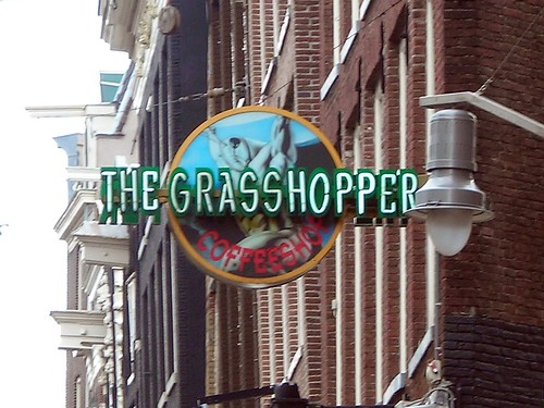 Grasshopper coffeeshop