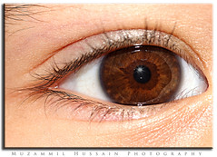 Macro eye (Muzammil (Moz)) Tags: macro eye closeup supermacro moz afraaz