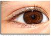 Macro eye (Muzammil (Moz)) Tags: macro eye closeup supermacro moz afraaz
