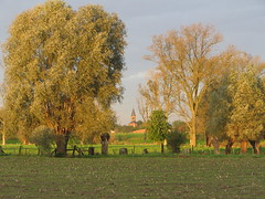 Autumn (nonkelduvel) Tags: a