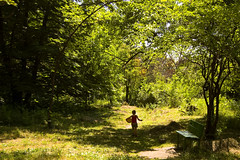 Child walking down a dirt track (Impeccability) Tags: road park wood morning trees summer sun tree green nature beautiful grass leaves sunshine weather forest ball bench children landscape photo wooden football spring nice saturated bush warm paradise afternoon child view shot sweet edited picture vivid sunny ground stellar filter photograph adobe lane romania romantic bushes bltter parc bucharest romanian dirttrack farben bukarest lightroom