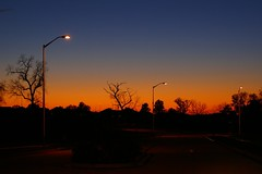 Jack-o-lantern Sky (Canicuss) Tags: blue trees light sunset sky orange lamp silhouette skyline landscape october streetlight jackolantern illuminated mo kansascity missouri treeline pumpkincolor canicuss