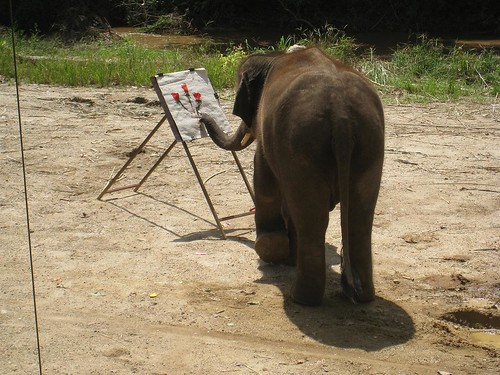 Painting during the elephant show