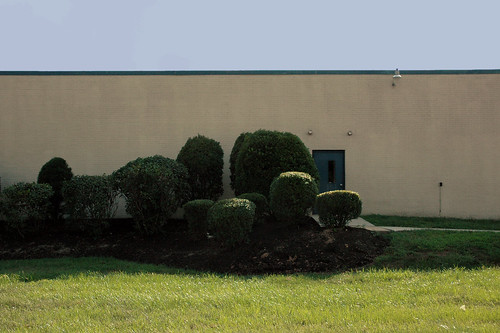 CENSORED bushes in front of door tech school
