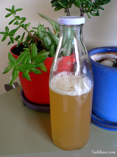Pineapple Cordial