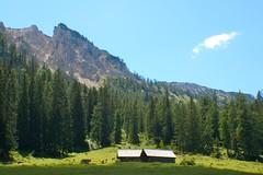 Auf der Alm (ecker) Tags: sky mountain berg cows himmel huts alm 2008 khe htten oedern oedernalm schneiderkogel almhtten dernalm sommer2008 dern dernalm2008