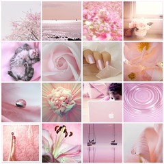 Life can be pink.... (..:*  *:..) Tags: world life pink friends light sunset summer people woman baby man primavera nature girl rose cat living donna fdsflickrtoys soft pretty tramonto estate sweet touch rosa kisses natura uomo dolce baci soul breeze terra anima brezza gatto luce vita ragazza vivere mondo bambino tenue lacrime tocco abbracci lifebeautiful goldstaraward theperfectpinkdiamond treardrops