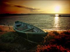 low tide (julioc.) Tags: wood autumn sunset