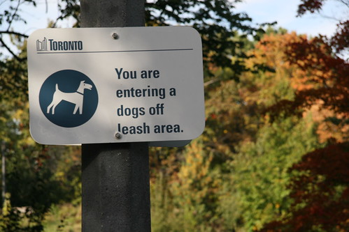 Dogs Off Leash Area by you.