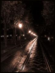 November (Manuel Tha boy) Tags: light strada novembre sad o dal via da luci sole sentiero shining lampioni vento riflesso spiagge binari percorso deandr venuto gelate stphotographia