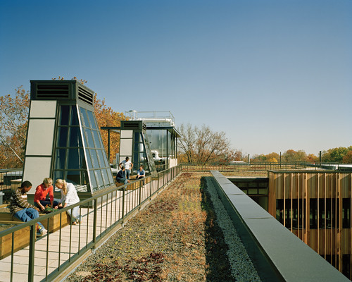 Kids at play? Nope, studying their expansive green roof.