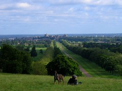 Windsor Castle as seen from the Copper Horse Hill (really only works viewed large) (UGArdener) Tags: castles landscape windsor windsorcastle saturdaymorning windsorgreatpark copperhorse maymorning amanandhisdog copperhorsehill