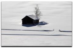 The Silence is White #1 (artundform) Tags: schnee winter white snow barn germany landscape bayern deutschland bavaria nikon europe outdoor htte tracks spuren landschaft weiss baum facebook mywinners redbubble artundform reflectyourworld
