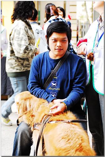 2008-12-11-「資訊」捐〝消費券〞幫助導盲犬上學去!