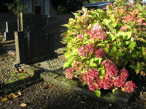Oud-Zuilen cemetery