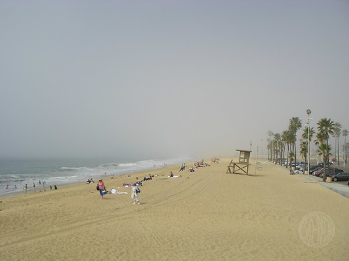 just another day in beachland