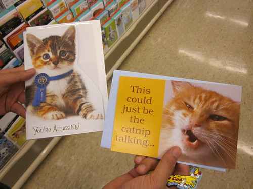 Picking Out Father's Day Cards