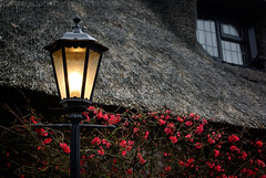 """2008_366055 - Lamp and Thatch • <a style=""""font-size:0.8em;"""" href=""""http://www.flickr.com/photos/84668659@N00/2288906782/"""" target=""""_blank"""">View on Flickr</a>"""