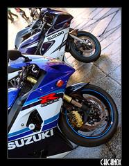 b (Tophangar) Tags: plaza vespa mayor harley triumph salamanca daytona ruedas motos concentracion charras