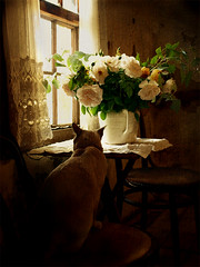 Pondering on life outside his world (redcipolla) Tags: flowers light roses stilllife texture window cat vintage dark shadows felix nostalgia past crackle oldworld scuro chiaro artlibre texturevaneskathomz