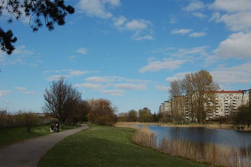 平和な公園の景色