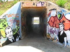 pasen y vean! (nadie en campaña) Tags: barcelona graffiti stencil plantilla nadie
