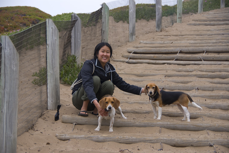 Jenny with the Beagles