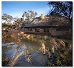 Bush Camp Lodge (Vertorama) (Panorama Paul) Tags: searchthebest soe limpopo novideo bushcamp nohdr shieldofexcellence anawesomeshot theperfectphotographer vertorama waterberggamereserve