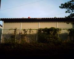 【写真】VQ1005で撮影した倉庫の上のボール達