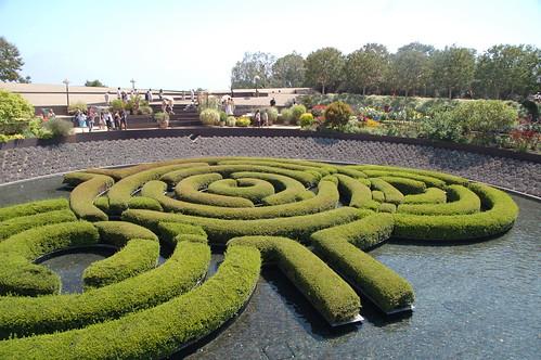 用植物種成的迷宮