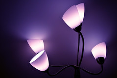 Light is color (kurafire) Tags: pink blue light color lamp colors purple vibrant desktopphoto catchycolorsblue catchycolorspurple catchycolorspink btawpcom