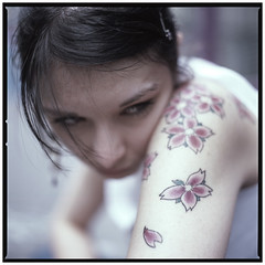 lily - tatoo (Laurent Orseau) Tags: paris flower colour 6x6 sakura tatoo hasselblad503cw extensiontube16