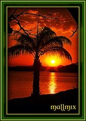 "Quarta Sunset ""3"" Luz do Sol (mallmix ((OFF))) Tags: world sunset pordosol amigos brasil canon mix fdsflickrtoys bravo flickr searchthebest natureza vivid esperança belohorizonte 2008 breathtaking bh pampulha lifeshot excellence simplicidade naturesfinest wonderworld ideia blueribbonwinner lagoadapampulha supershot magicdonkey flickrsbest specnature fantasticflower masterphotos goldenmix abigfave artlibre worldbest platinumphoto câmeradeourobrasil anawesomeshot impressedbeauty aplusphoto ultimateshot specinsect irresistiblebeauty superbmasterpiece goldenphotographer wowiekazowie diamondclassphotographer flickrdiamond superhearts frhwofavs ishflickr ysplix excellentphotographerawards flickrelite creativephotograhers amobhradicalmente mauriciomix1yahoocombr colourartaward fiveflickrfavs wonderfulworldmix mallmix thedropsofrain mallmixstaraward pordosollagoadapampulha sunsetlagoadapampulha"
