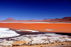 Laguna Colorada (Red Lagoon), Bolivia