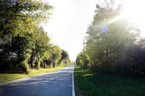 morning drive.
