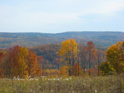 Autumn Adirondacks 1